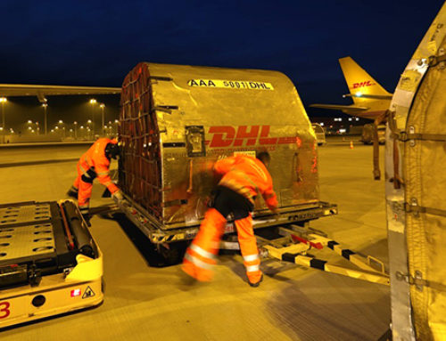 Learn Importing 101 with DHL