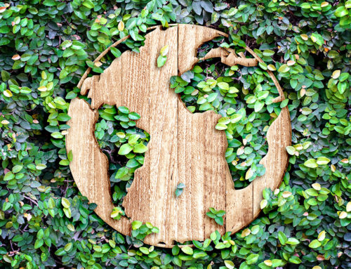 Making Earth Day Matter for Your Business