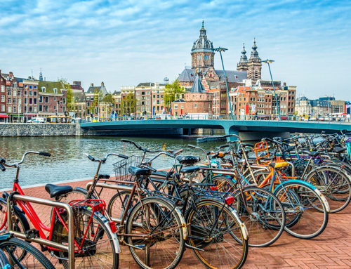 A Complete Guide to Doing Business in the Netherlands